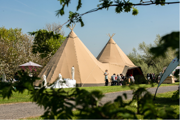 Tipi setup in summer